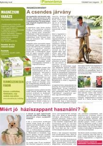 Panorama magazin_április_3oldal