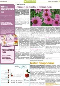 Panorama magazin_február_3oldal