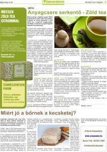 Panorama magazin_marcius_3oldal